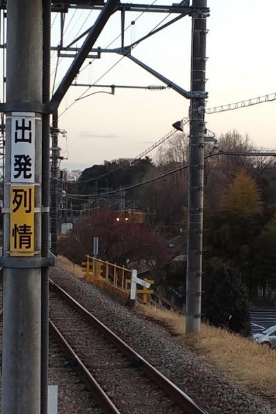 120221_1716~01.JPG