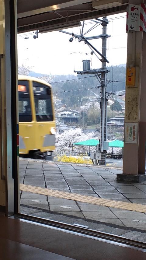 120421_1556~01.JPG