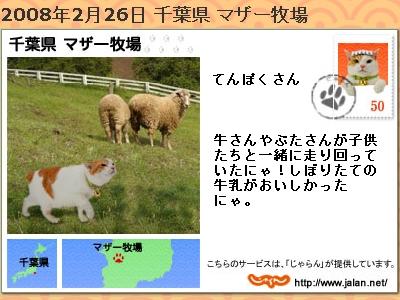 20080226.jpg